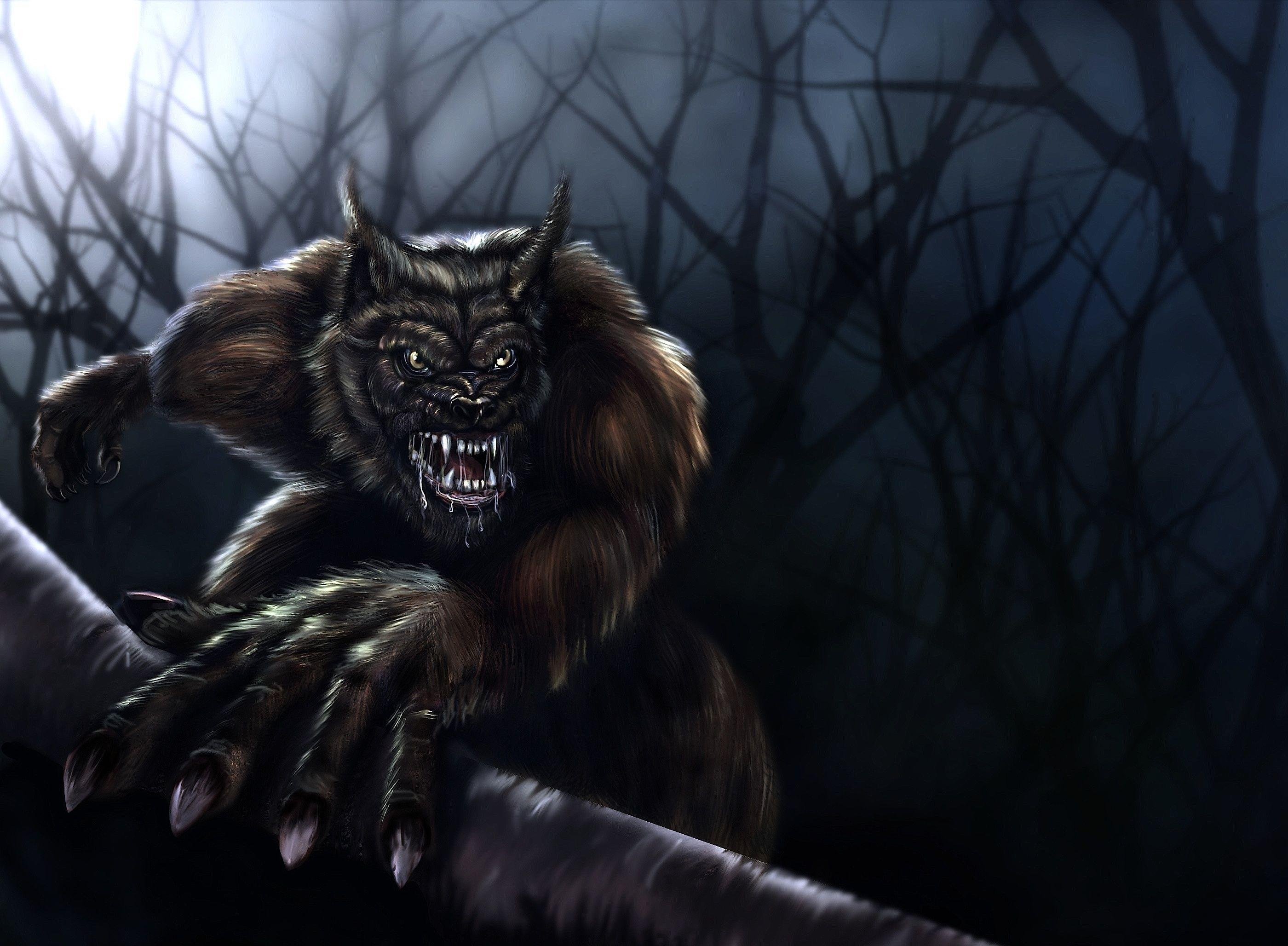 Des Loups Garous En Dessin Et Image